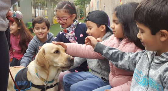 Perros de terapia visitan a los alumnos del Kínder A y B