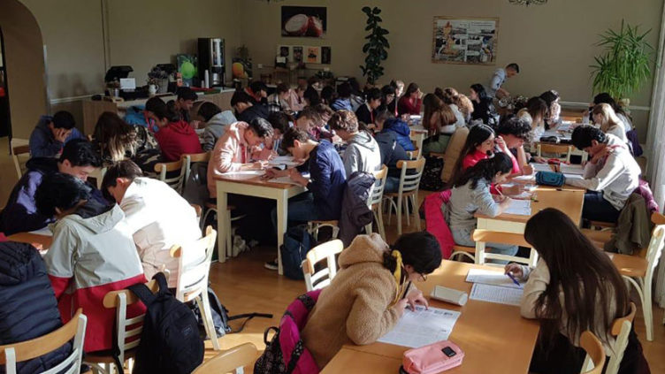 intercambio-internacional-cognita-schools-cognita-chile-colegios-pumahue-manquecura-american-british-06